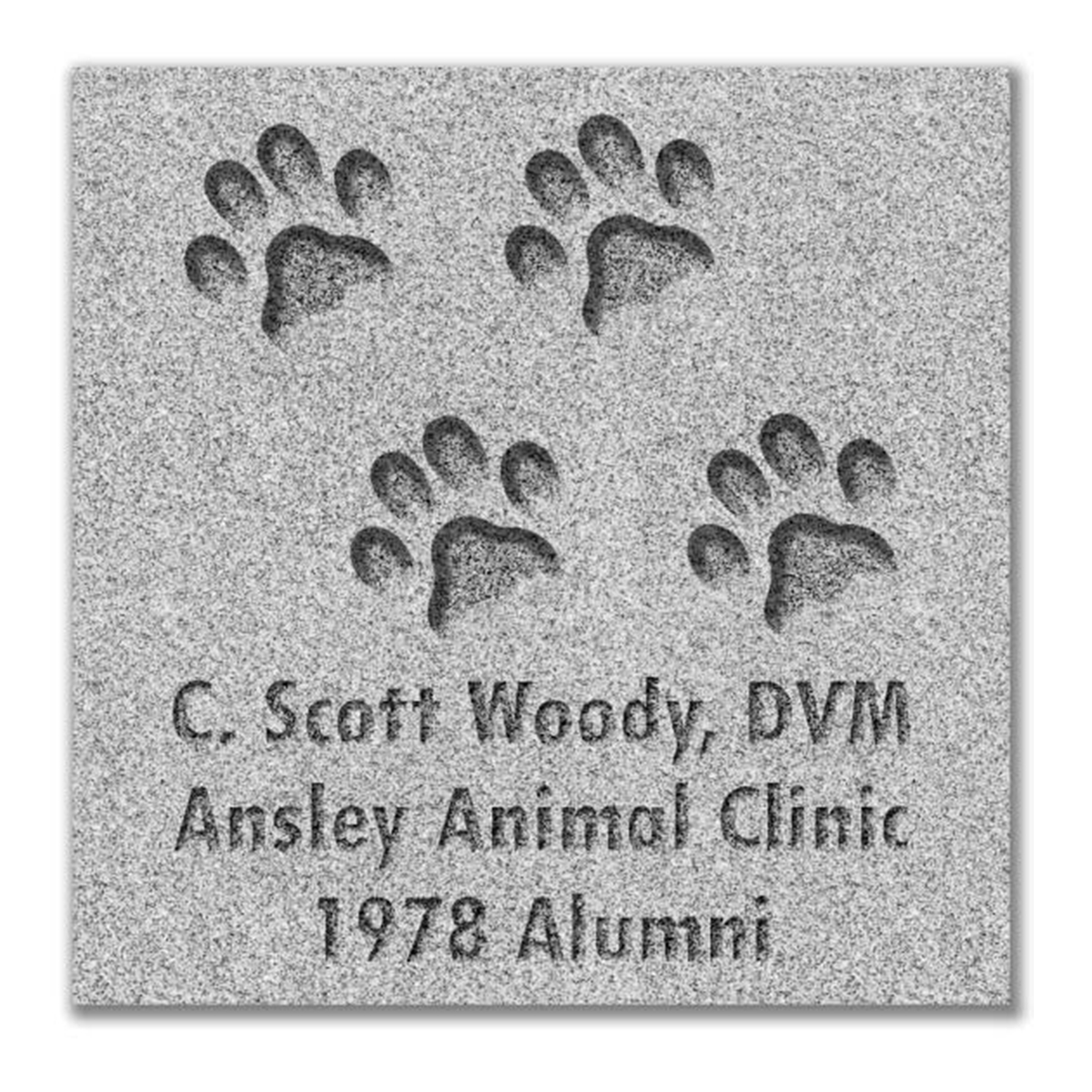 Cat Paw Paver Graphic