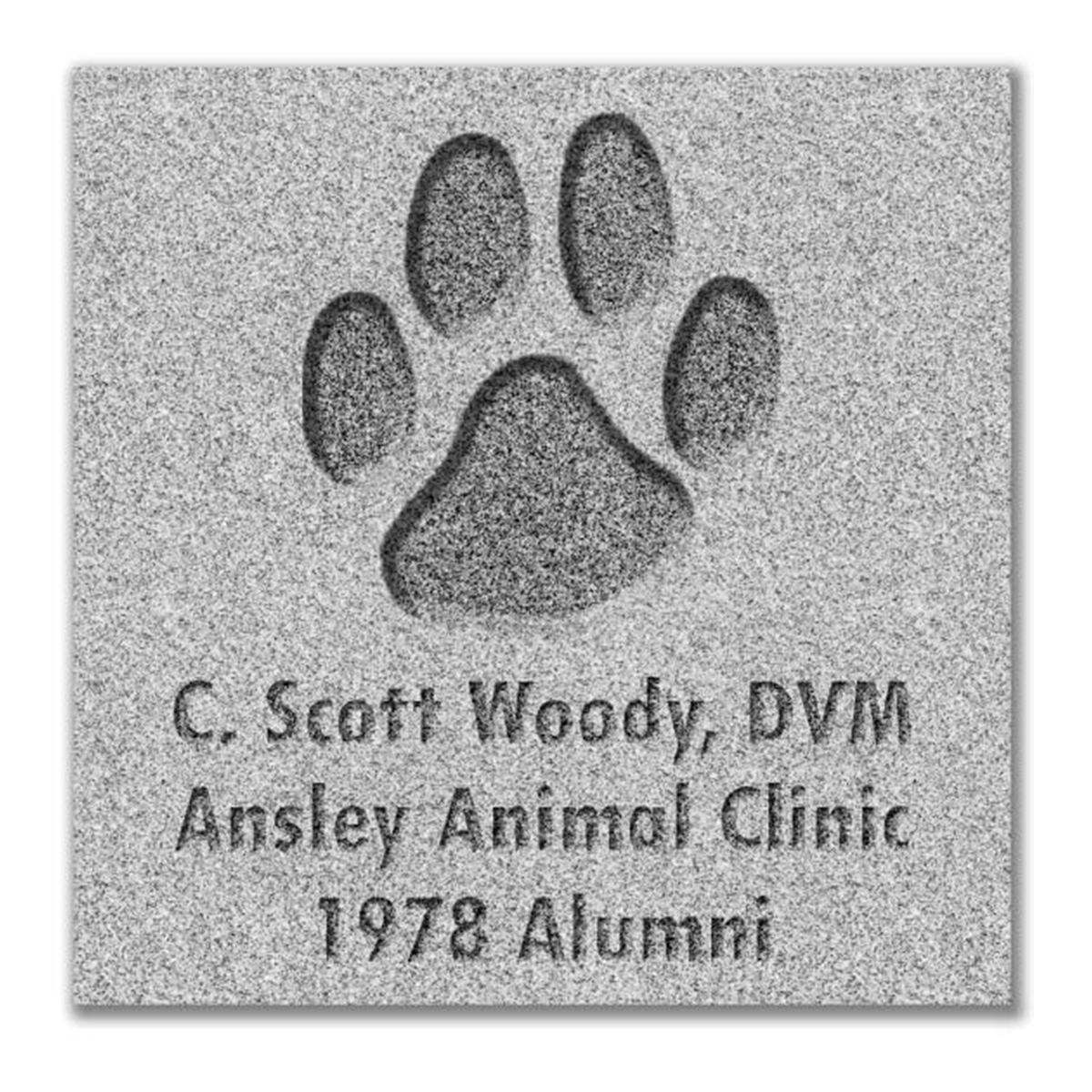 Dog Paw Paver Graphic