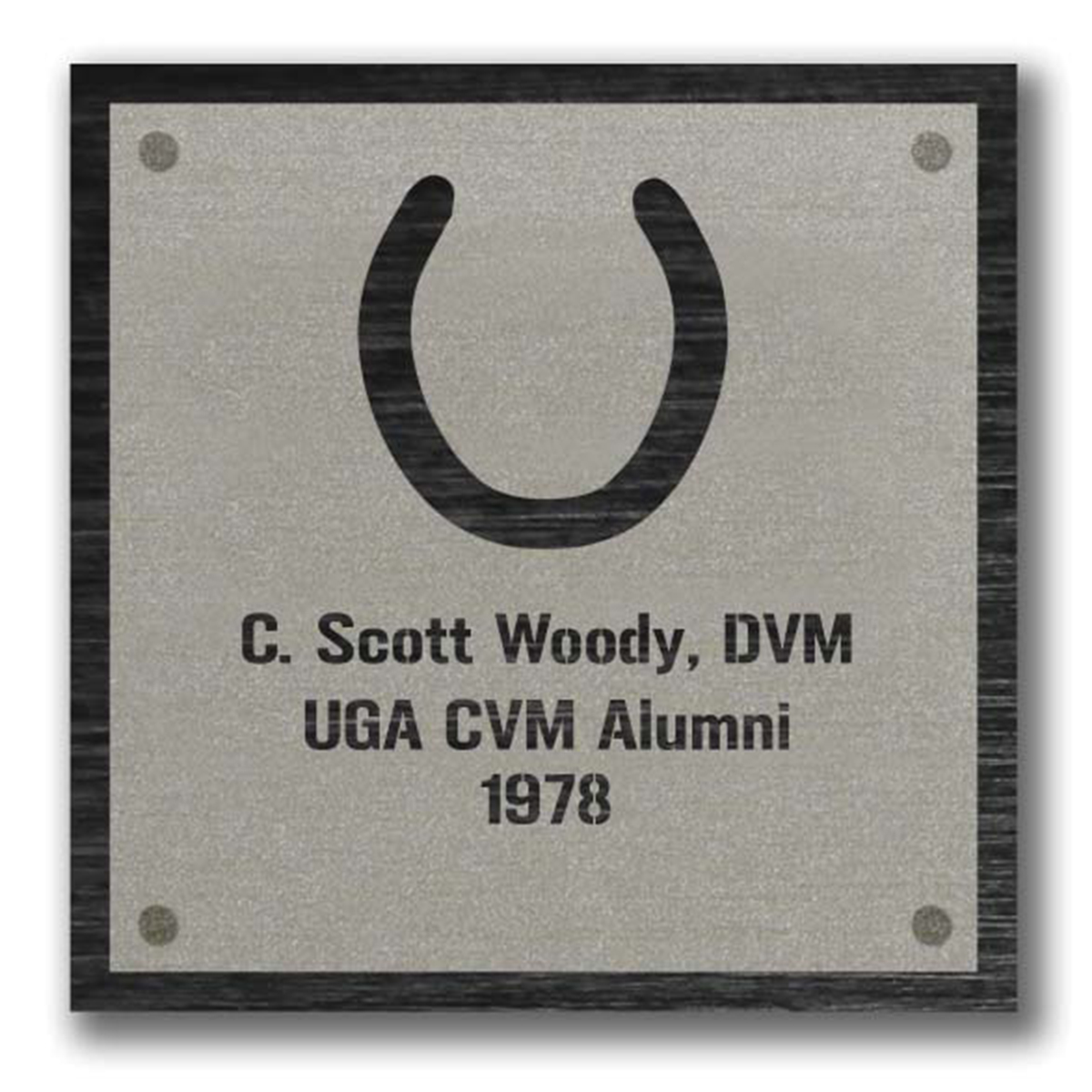 Horseshoe Plaque Graphic