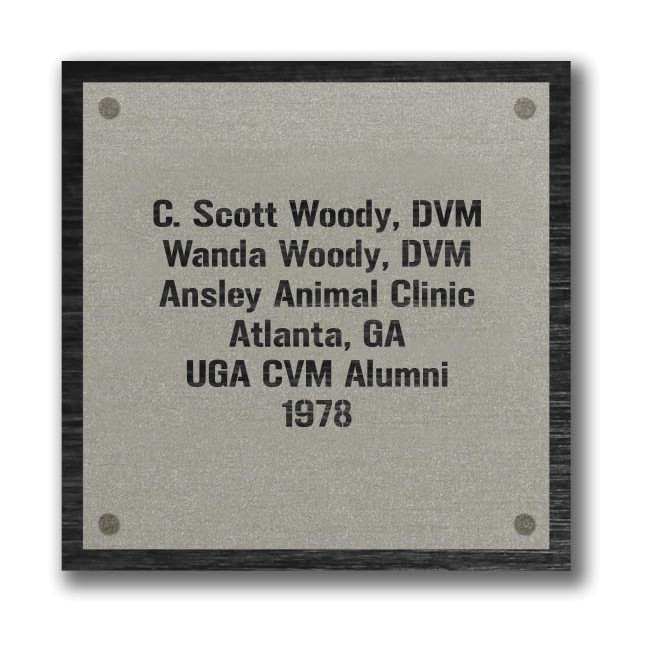 Plaque Six Line Example Image