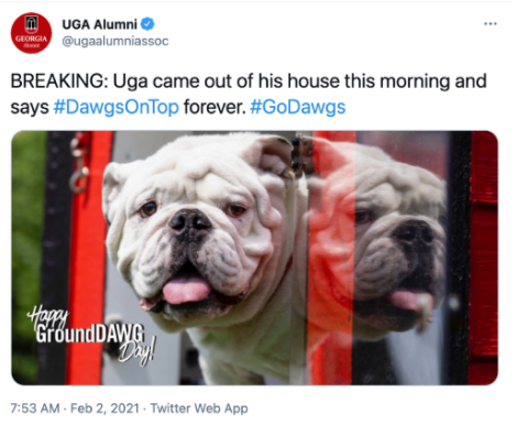 Uga X in his doghouse